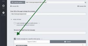 Custom Targeting in Visual Website Optimizer